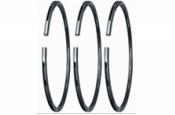Cast Iron Oil Ring #555 (FC)