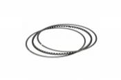GP type Expenders Ring